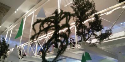 Natale2014_11
